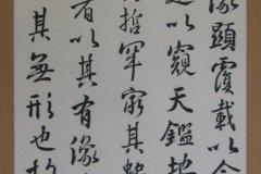 bruno-riva-gyosho-rinsho4